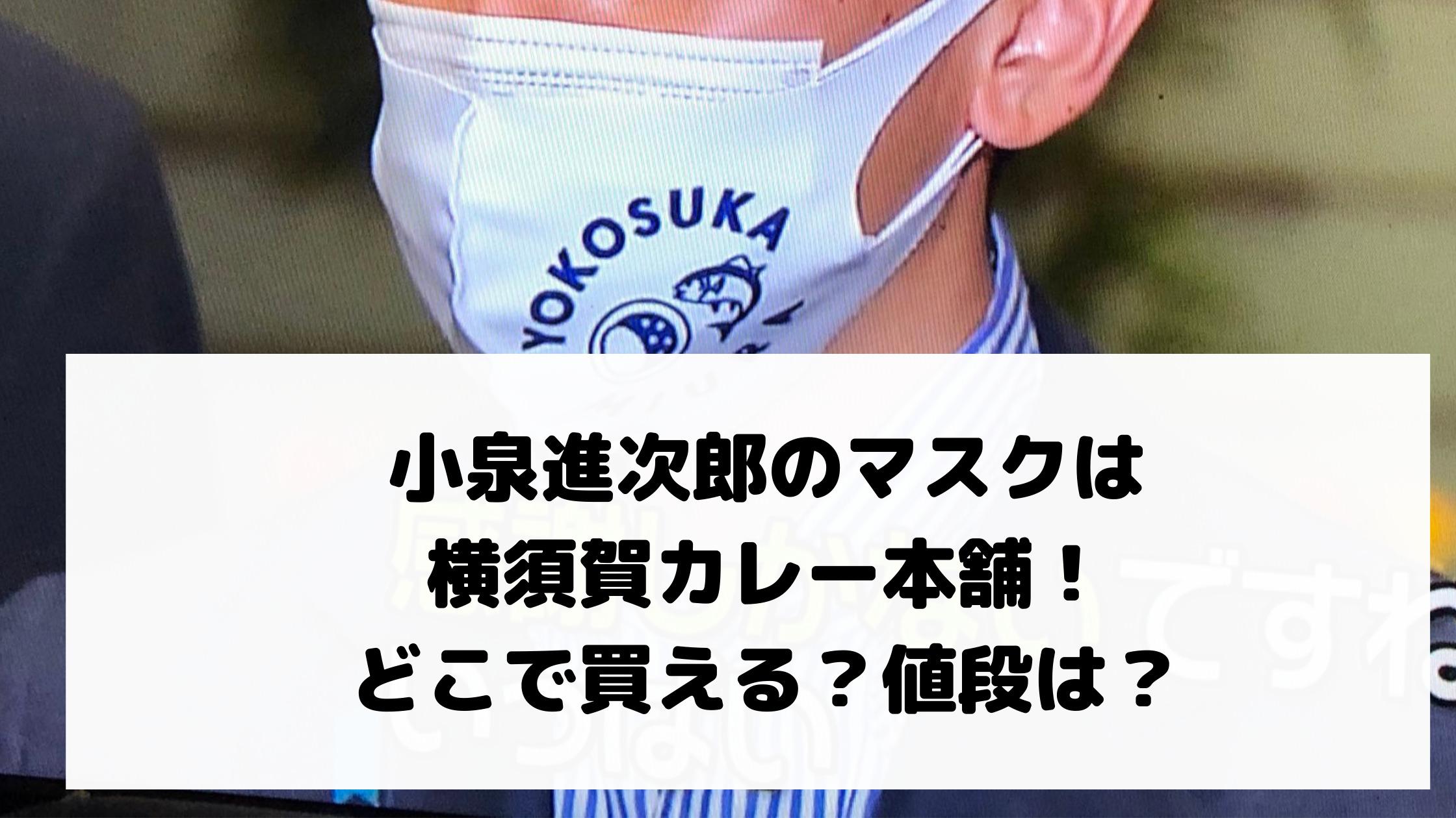 小泉進次郎のマスクは横須賀カレー本舗!どこで買える?値段は?